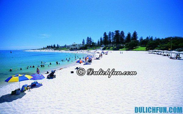 Khu sinh thái biển Rockingham, địa điểm du lịch nổi tiếng ở Perth, những điểm du lịch đẹp ở Perth