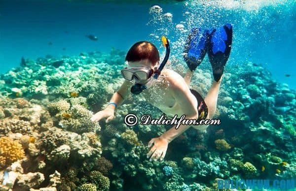 Một vài lưu ý quan trọng về du lịch đảo Coron, Philippines. Kinh nghiệm du lịch Coron, Philippines