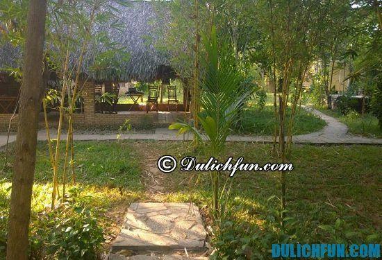 Nên ở đâu khi du lịch rừng Nam Cát Tiên? Nhà nghỉ, khách sạn đẹp, giá rẻ ở rừng Nam Cát Tiên