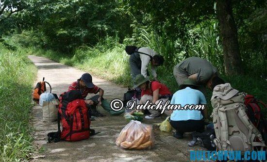 Ăn gì khi du lịch rừng Nam Cát Tiên? Khám phá những món ăn ngon, nổi tiếng ở rừng Nam Cát Tiên
