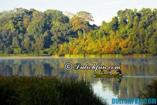 Hướng dẫn và kinh nghiệm du lịch rừng Nam Cát Tiên. Gợi ý lịch trình du lịch rừng Nam Cát Tiên 2 ngày 1 đêm