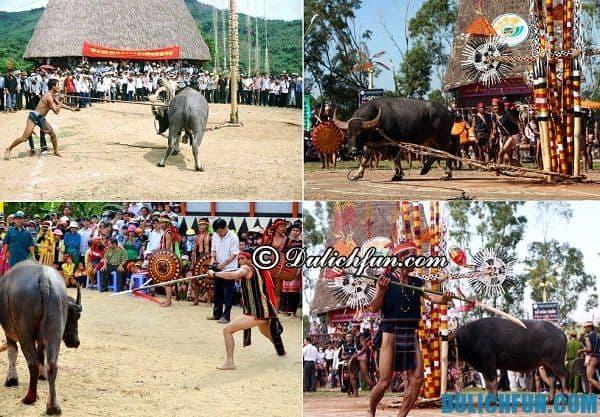 Những lễ hội lớn, hấp dẫn ở Đà Lạt xin đừng bỏ qua. Du lịch văn hóa lễ hội ở Đà Lạt. Các lễ hội độc đáo, festival hoa ở Đà Lạt.