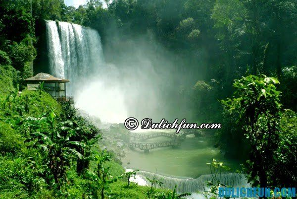Thác nước đẹp và cao nhất ở Đà Lạt: Địa chỉ các thác nước đẹp, hùng vĩ và nổi tiếng ở Đà Lạt