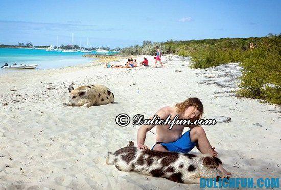 Chia sẻ kinh nghiệm du lịch Bahamas tự túc, vui vẻ. Hướng dẫn và kinh nghiệm du lịch Bahamas đầy đủ, chi tiết