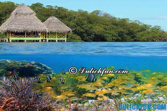 Kinh nghiệm du lịch Panama giá rẻ: Du lịch Panama có gì thú vị? Quần đảo Bocos del Toro, địa điểm tham quan, du lịch nổi tiếng ở Panama