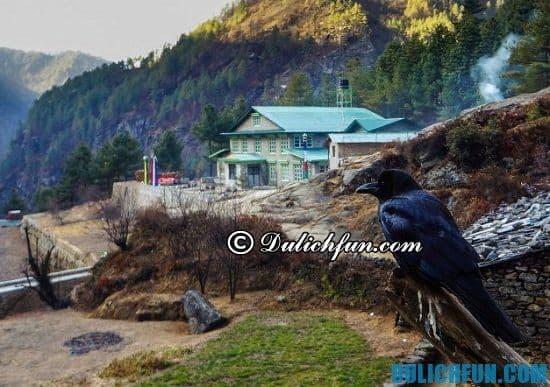 Nên du lịch Nepal vào thời gian nào là hợp lý nhất? Thời điểm lý tưởng nên du lịch Nepal