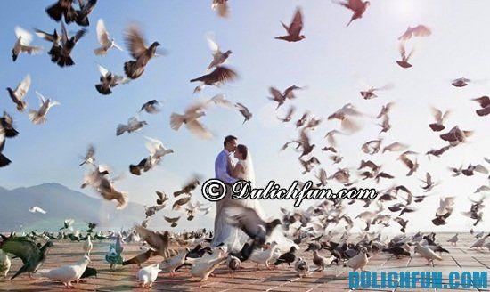 Một số địa chụp ảnh cưới đẹp, lạ ở Đà Nẵng. Công viên Biển Đông, địa điểm chụp ảnh cưới lãng mạn ở Đà Nẵng
