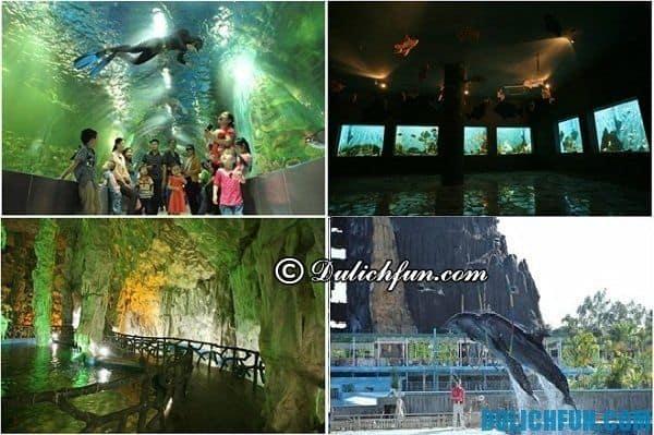 Chơi gì khi du lịch Thiên Đường Bảo Sơn? Khám phá những địa điểm tham quan, vui chơi giải trí ở Thiên Đường Bảo Sơn