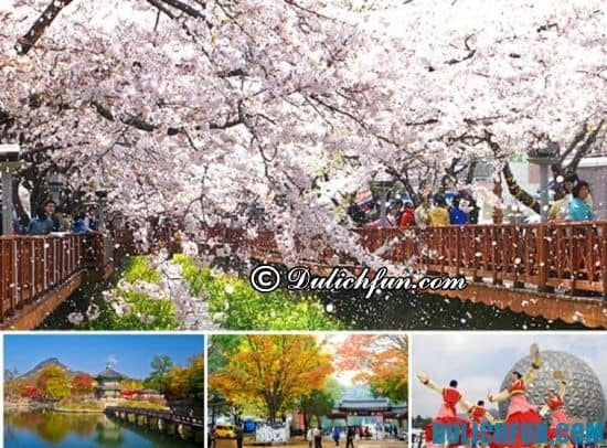 Du lịch Hàn Quốc 5 ngày hết khoảng bao nhiêu tiền? Tổng chi phí du lịch Hàn Quốc