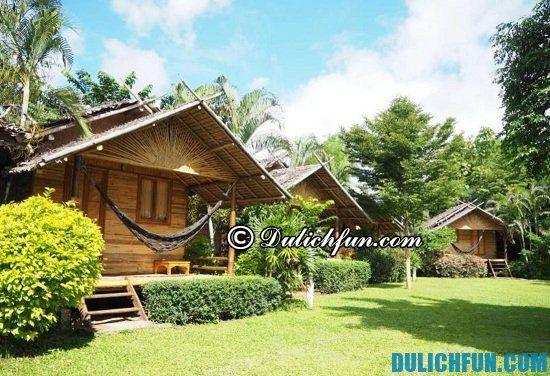 Nên ở đâu khi du lịch Pai? Nhà nghỉ, khách sạn đẹp, nổi tiếng ở Pai