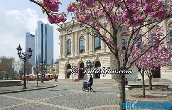 Du lịch Frankfurt mùa nào đẹp nhất? Thời điểm lý tưởng nên du lịch Frankfurt