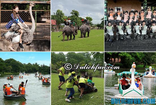 Khu du lịch sinh thái Vườn Xoài có gì thú vị? Khám phá các hoạt động vui chơi, giải trí vui vẻ, hấp dẫn ở Vườn Xoài
