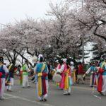 Hàn Quốc có những lễ hội gì? Khám phá những lễ hội lớn, độc đáo ở Hàn Quốc
