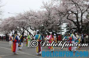 Những lễ hội lớn, đặc sắc ở Hàn Quốc: Địa điểm & thời gian