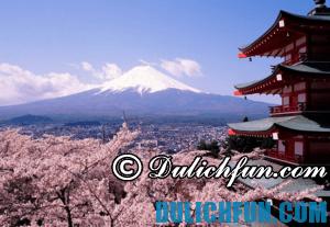 Du lịch Tết nên đi du lịch nước nào? Du lịch Nhật Bản dịp Tết Nguyên Đán có gì thú vị