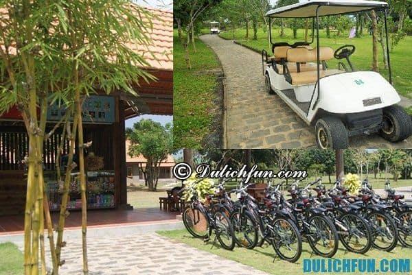 Hướng dẫn tham quan du lịch công viên Suối Mơ 1 ngày: Chơi gì ở khu du lịch Suối Mơ, Đồng Nai