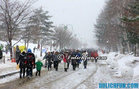 Ở Hàn Quốc có những lễ hội nào? Thời gian và địa điểm diễn ra lễ hội ở Hàn Quốc, Lễ hội Núi tuyết Taebaeksan, lễ hội hấp dẫn ở Hàn Quốc nhất định phải tham dự