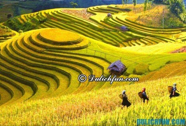 Danh sách các điểm tham quan du lịch đẹp nhất Việt Nam