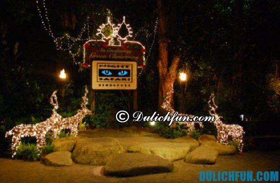 Đi du lịch sở thú đêm Night Safari có gì thú vị? Khám phá các địa điểm tham quan, vui chơi giải trí thú vị ở vườn thú đêm Night Safari