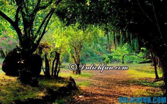 Hướng dẫn du lịch sinh thái Cao Minh. Chia sẻ kinh nghiệm du lịch Cao Minh tự túc, vui vẻ
