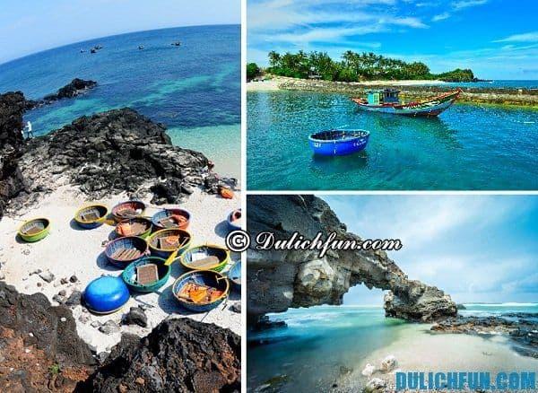 Du lịch đảo Lý Sơn 2 ngày 1 đêm tự túc, giá rẻ: Tư vấn lịch trình vui chơi, ăn uống ở đảo Lý Sơn trong 2 ngày 1 đêm