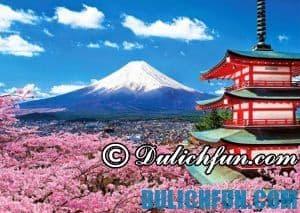 Du lịch Nhật Bản tháng 10 có gì thú vị? Lễ hội và sự kiện