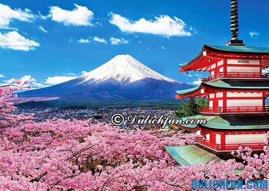 Tháng 10 ở Nhật Bản có gì? Khám phá những hoạt động thú vị ở Nhật Bản trong tháng 10