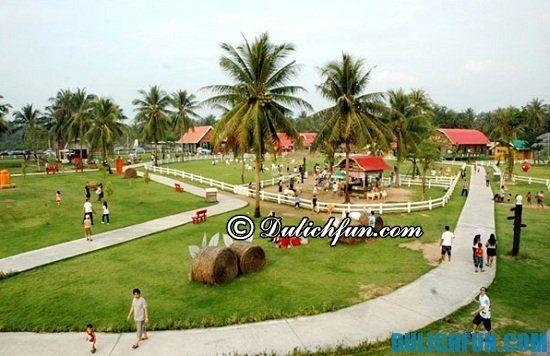 Nên đi đâu khi du lịch Bangkok - Pattaya? Gợi ý chi tiết lịch trình du lịch Bangkok - Pattaya 4 ngày 3 đêm đáng nhớ
