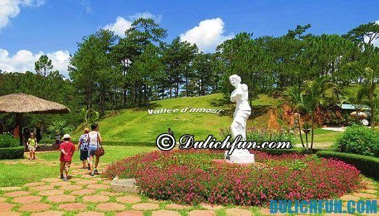 Du lịch Đà Lạt - Nha Trang 6 ngày 5 đêm nên đi đâu? Gợi ý lịch trình du lịch Đà Lạt - Nha Trang 6 ngày 5 đêm tự túc, vui vẻ và trọn vẹn