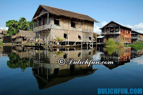 Ở đâu khi du lịch làng nổi Tân Lập? Kinh nghiệm và lịch trình vui chơi, ăn uống ở làng nổi Tân Lập