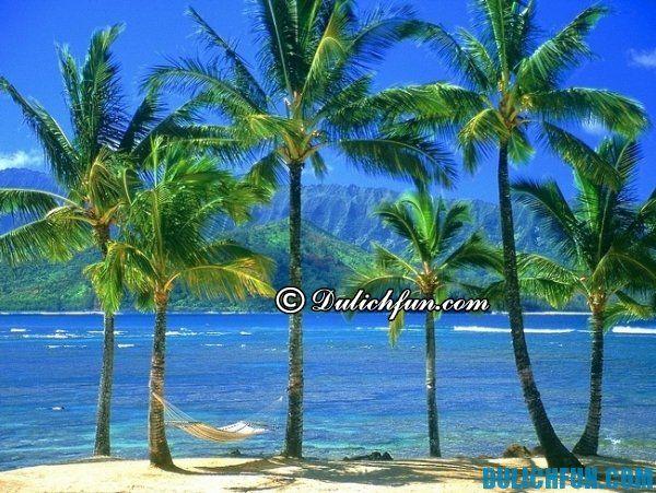 Hướng dẫn du lịch Hawaii