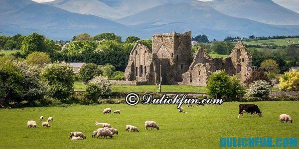 Địa điểm tham quan nổi tiếng Ireland/ Nên ở đâu khi du lịch Ireland?