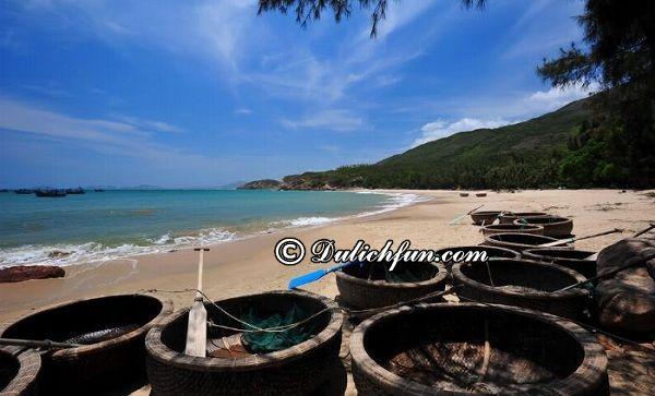 8 bãi tắm đẹp nhất Quy Nhơn, Bình Định: Địa chỉ những bãi biển đẹp, nổi tiếng ở Quy Nhơn, Bình Định