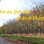 du lịch Bình Phước nên đi đâu? những điểm du lịch đẹp ở Bình Phước nổi tiếng