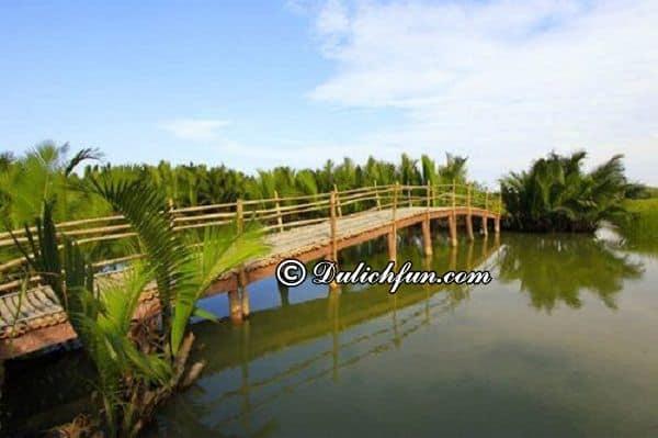 Đi tới rừng dừa Bảy Mẫu bằng phương tiện gì? Cách di chuyển đến rừng dừa Bảy Mẫu