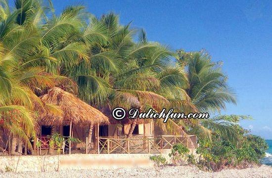 Nên ở đâu khi du lịch Haiti? Le Tresor Hotel, nhà nghỉ, khách sạn đẹp, nổi tiếng ở Haiti