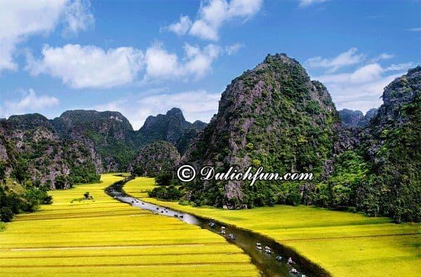 Du lịch những địa danh ở Ninh Binh trong phim King Kong. Bối cảnh phim King Kong ở Ninh Bình. King Kong quay phim ở Ninh Bình.
