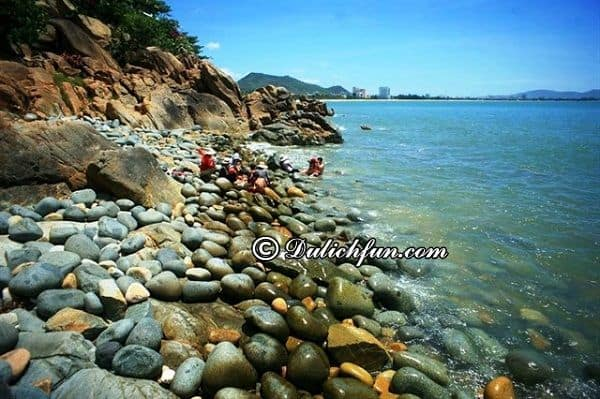 Bãi biển nổi tiếng bậc nhất Quy Nhơn. Top bãi tắm đẹp ở Quy Nhơn
