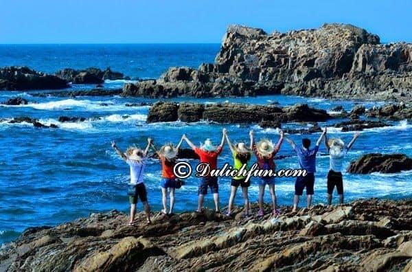 Du lịch mùa hè ở miền Bắc nên đi đâu rẻ, đẹp? Du lịch đảo Cô Tô vào hè ở miền Bắc