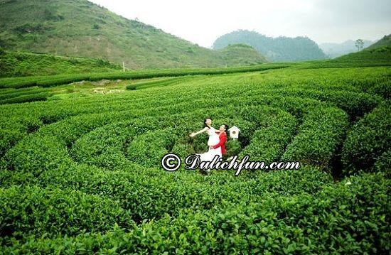 Tổng hợp địa điểm chụp ảnh cưới đẹp, ấn tượng nhất Mộc Châu