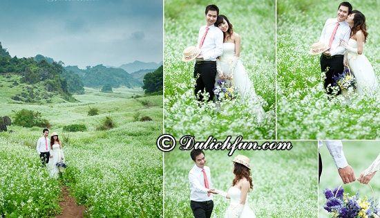 Đồng cải Mộc Châu, địa điểm chụp ảnh cưới lãng mạn ở Mộc Châu được yêu thích nhất: Nên chụp hình cưới ở đâu Mộc Châu?