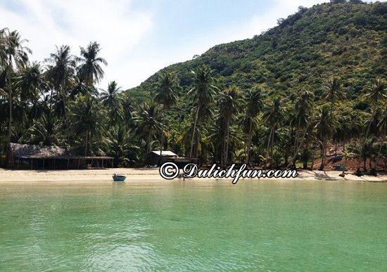Hướng dẫn lịch trình tham quan, ăn uống khi du lịch Hòn Tre: Ở Hòn Tre có chỗ nào đẹp? Động Dừa, địa điểm du lịch được yêu thích nhất ở Hòn Tre