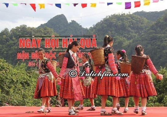 Ngày hội hái quả, lễ hội truyền thống ở Mộc Châu được nhiều người yêu thích nhất