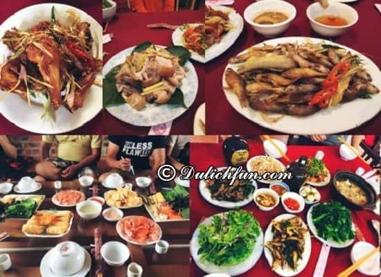 Những nhà hàng ăn ngon, giá rẻ ở Mộc Châu cho các phượt thủ. Nhà hàng Đồng Mộc, Địa chỉ ăn đặc sản ngon, giá rẻ ở Mộc Châu