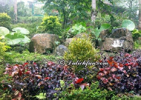Du lịch cửu thác Tú Sơn có gì thú vị? Vườn Thượng Uyển, địa điểm tham quan, du lịch đẹp, lãng mạn ở cửu thác Tú Sơn
