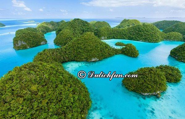 Kinh nghiệm du lịch Palau