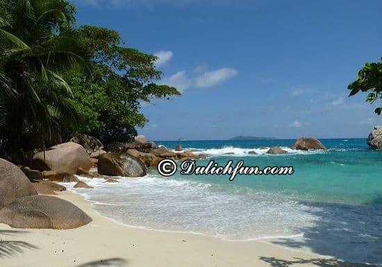 Nên đi đâu, chơi gì khi du lịch Seychelles? Đảo Praslin, địa điểm tham quan, du lịch nổi tiếng ở Seychelles được yêu thích nhất