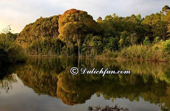 Những địa điểm du lịch hấp dẫn nhất ở Kon Tum. Vườn quốc gia Chư Mom Ray, địa điểm tham quan đẹp, thú vị ở Kon Tum không nên bỏ lỡ