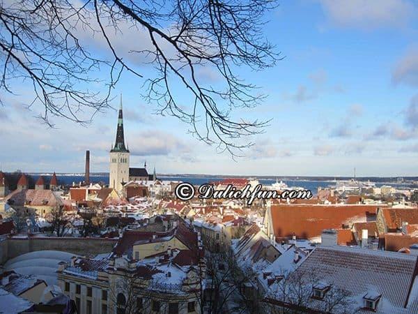 Kinh nghiệm du lịch Estonia điểm đến thời trung cổ. Hướng dẫn, cẩm nang du lịch Estonia cụ thể, chi tiết đường đi, ăn uống, chỗ ở.