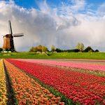 Kinh nghiệm mua sắm ở Hà Lan - Mua đồ làm quà ở Hà Lan. Du lịch Hà Lan nên mua sắm gì, ở đâu đậm chất làm quà? Đồ lưu niệm Hà Lan.